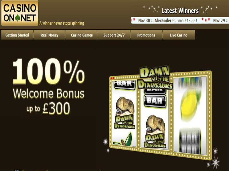 Casino preview image Casino On Net