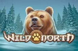 gambleengine wildnorth