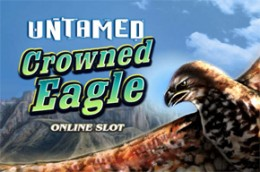 gambleengine untamedcrownedeagle