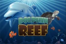 gambleengine dolphinreef