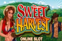 gambleengine sweetharvest
