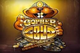 gambleengine gophergold