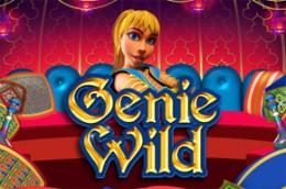 gambleengine geniewild