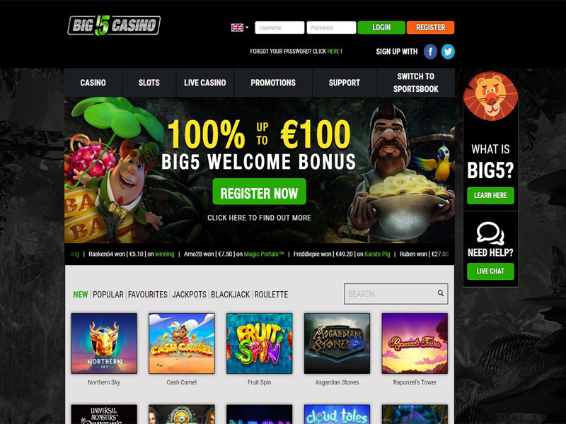 Casino preview image Big 5 Casino